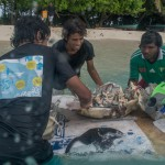 Transporting Bottle nursery untis back on Fainu