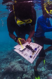 Local teams familiarze themselves with the Ecological Monitoring Program