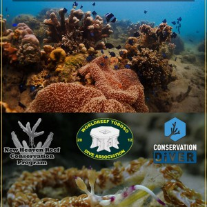 Toboso-Biodiversity-and-Ecosystem-Report